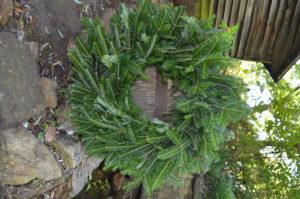 Fraser Fir wreath