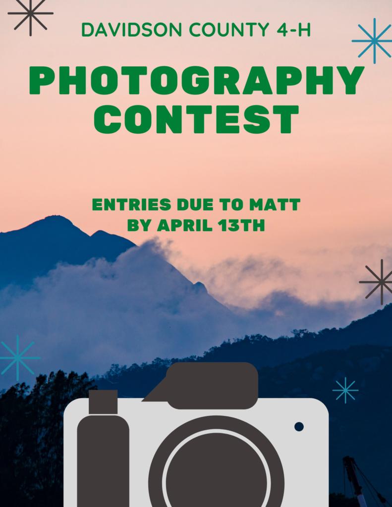 Photo contest flyer 1