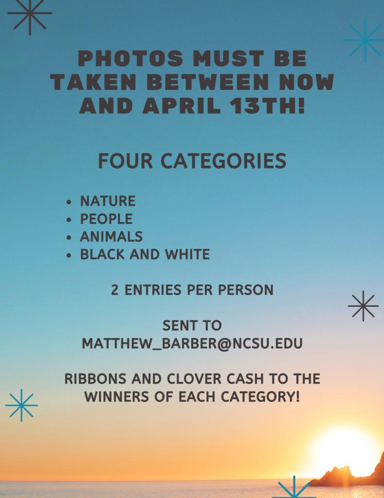 Photo contest flyer 2