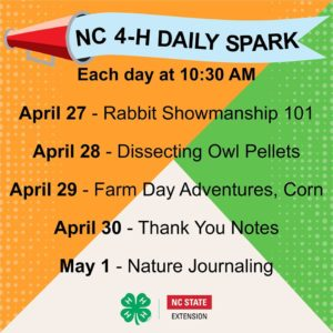 Cover photo for 4-H Spark Week 6