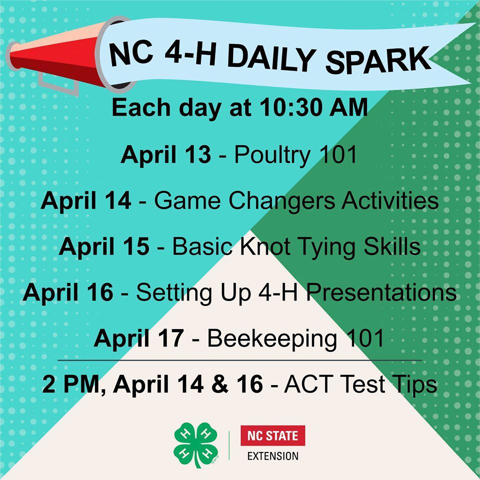 NC 4-H Daily Spark flyer