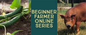 Cover photo for Beginner Farmer Online Series